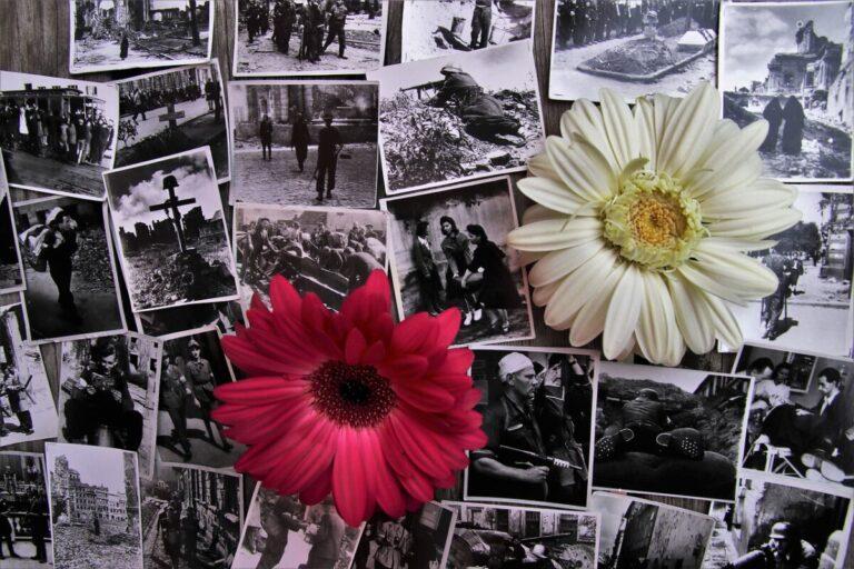 Oude foto's met bloemen